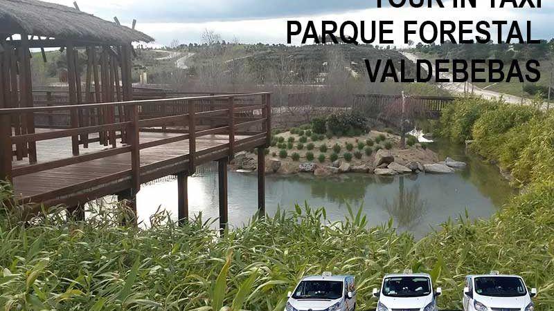 TOUR-IN-TAXI-VALDEBEBAS-3